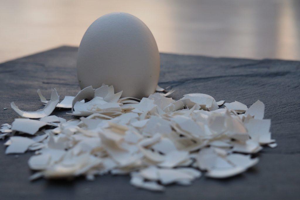 Foto von einem Ei
